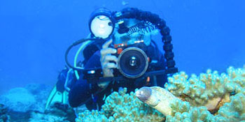 Take the PADI Digital Underwater Photographer Course